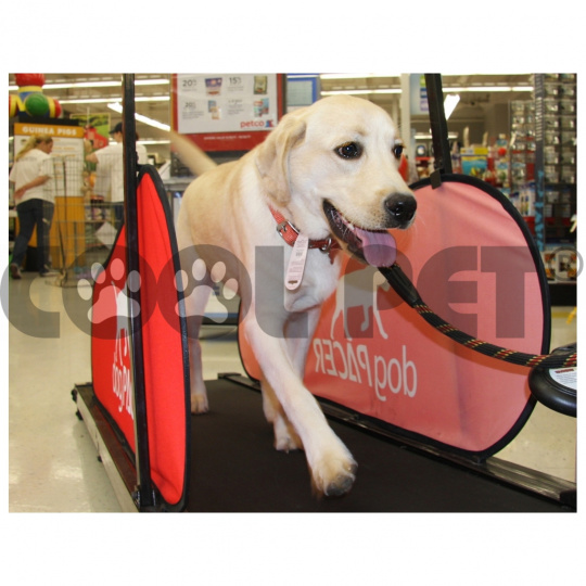 Treadmills for large dogs DOG PACER LF 3.1
